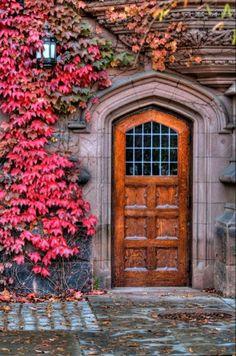hölzerne Haustür, dekoriert mit Blättern