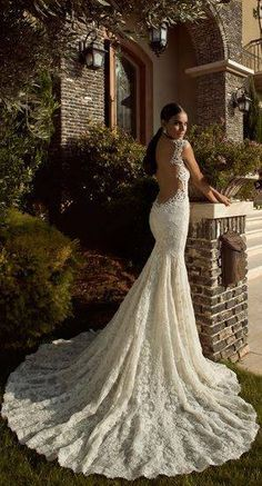 Incredible fit and flare, open back, lace wedding dress, with a gorgeous train.
