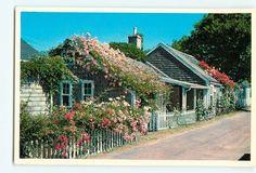 Nantucket Island Rose Covered Cottage