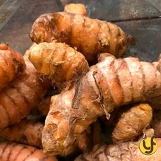 Raw turmeric is extremely useful for personalized utilization of turmeric for various purposes. Raw Turmeric, Shelf Life, Yellow And Brown, Pakistan, Benefit, Powder, Healthy Recipes, Food, Face Powder