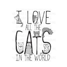 I love all the cats in the world!