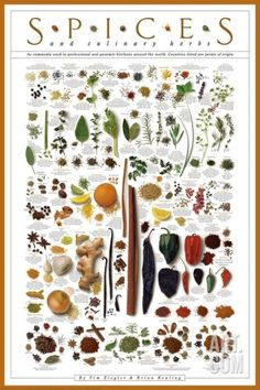 Spices and Culinary Herbs Print at Art.com