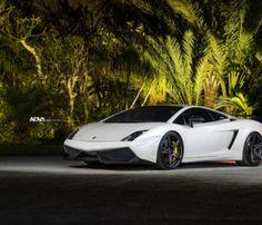 A stunning White Lamborghini Gallardo with a set of SL wheels installed White Lamborghini, Lamborghini Gallardo, Super Fast Cars, Matte Black, Luxury Cars, Black And White, Wheels, Wallpaper, Vehicles