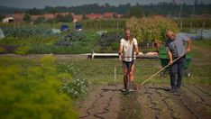 On a mission to save our soils - the EU's plan to rebuild the land | Euronews Strange Things Are Happening, Plant Diseases, Sea Level Rise, Climate Change Effects, Paradigm Shift, Ryan Reynolds, Ryan Gosling, Kate Winslet, Natural Resources