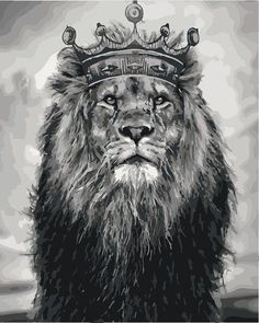 Lion king Paint by number kit Paint by numbers kit DIY - hobby garden info - Majestic Animals, Animals Beautiful, Lion Of Judah Jesus, Arte Do Hip Hop, Lions Live, Lion Photography, King Painting, Lion Sketch, Lion And Lioness