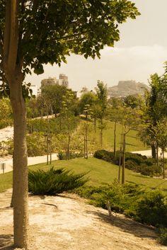Jose Luis Romeu: La arquitectura del paisaje 1