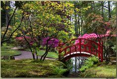 Afbeelding van http://static.zoom.nl/DA37000D1687D583738B2A48C43122CF-japanse-tuin.jpg.