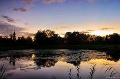 Crépuscule et étang
