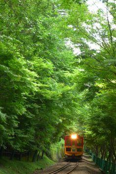 嵯峨野観光鉄道・嵯峨野トロッコ列車(嵯峨野~丹波亀岡間)