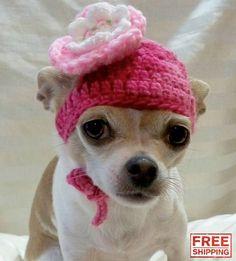 """Handmade Wool """"Flower"""" Chihuahua Hat"""