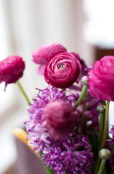 Ranunculus ✦ ❤️ ●❥❥●* ❤️ ॐ ☀️☀️☀️ ✿⊱✦★ ♥ ♡༺✿ ☾♡ ♥ ♫ La-la-la Bonne vie ♪ ♥❀ ♢♦ ♡ ❊ ** Have a Nice Day! ** ❊ ღ‿ ❀♥ ~ Sat 25th July 2015 ~ ❤♡༻ ☆༺❀ .•` ✿⊱ ♡༻ ღ☀ᴀ ρᴇᴀcᴇғυʟ ρᴀʀᴀᴅısᴇ¸.•` ✿⊱╮
