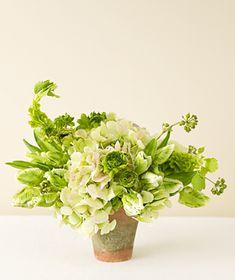 Green hydrangea, ranunculus, Bells of Ireland, and heeder