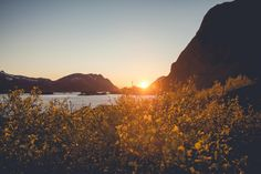 sunset, dusk, mountains, landscape, nature, sky, plants, lake, water, ocean, sea, silhouette, shadows