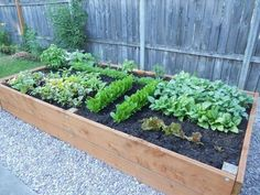 20 Cheap & Easy DIY Raised Garden Beds Also, it's one of the most economical methods for the garden. While raised garden beds are often built to certain […] Raised Garden Planters, Raised Planter Beds, Garden Planter Boxes, Building A Raised Garden, Diy Planters, Raised Garden Beds, Raised Beds, Diy Garden Box, Garden Art