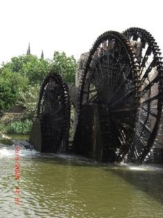 Norias (Water Wheels), Hamah Picture: Old Mosques - Check out Tripadvisor members' 495 candid photos and videos of Norias (Water Wheels) Water Wheels, Mosques, Natural Resources, Windmill, Waterfalls, Trip Advisor, Photo And Video, Nature, Beauty