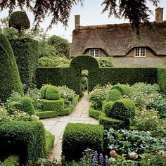 Boxwood hedge garden room at Hidcote Manor - I want to go here!