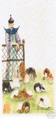 Mandarin looking at his pekingese Spaniel Breeds, Dog Breeds, Dog Lover Gifts, Dog Lovers, Pekingese Puppies, Fu Dog, Lion Dog, Japanese Chin, Shih Tzu