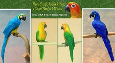 learn to flock and feather a 1:12 scale parrot