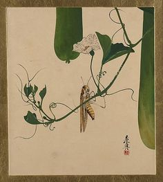 Lacquer Paintings of Various Subjects: Grasshopper on Gourd Vine    Shibata Zeshin (Japanese, 1807–1891)    Period: Meiji period (1868–1912) Date: 1882