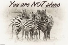 You Are NOT Alone!  Find others through www.ednf.org  www.inspire.com and in Houston EDS Houston:   http://www.facebook.com/groups/293737013978523/    #EhlersDanlosSyndrome Awareness #EDS