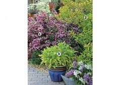 Creer une rocaille rocaille de fleurs rocaille plantes for Plante massif sans entretien