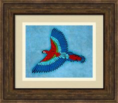 Parrot Framed Print By Maria Ines Quevedo