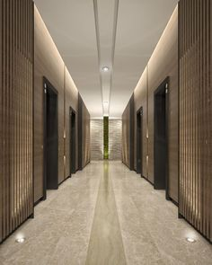Image result for PANELED WALL CORRIDOR ELEVATOR MODERN