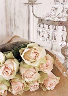 ♥ The Rose Garden ♥ ♫ romantic pink roses  .. X ღɱɧღ ||