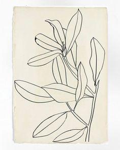 Leaves, Ile St. Louis, 1950, Ellsworth Kelly. Greek Girl, Ellsworth Kelly, Art Journal Pages, Line Art, Pattern Design, Art Drawings, Illustration Art, Watercolor, Floral