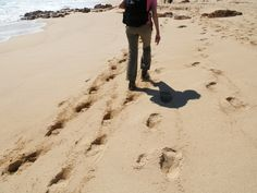 #greatwalker Take photos. Leave nothing but footprints. Tackling a soft sand beach on Cape to Cape track south of Perth, Australia.