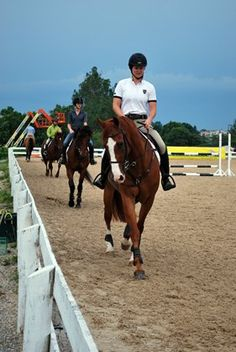 Heart Rate's Effect on Equine Performance
