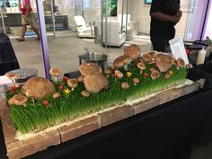 We love doing this set up for our mushroom risotto station.  Fresh wheat grass and mushrooms.  This time we added cherry tomatoes for a little color!