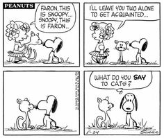 #thepeanuts #pnts #peanuts #schulz #snoopy #redhairedgirl #faron #cats