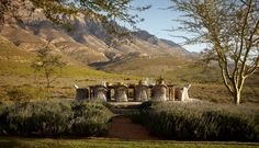 You'll find Bobbejaansberg, a low-slung, wisteria-covered, Karoo slate home and the most perfect hideaway in Barrydale in the Klein Karoo. Eco Cabin, River Lodge, Mountain Bike Trails, Beach Bungalows, Old Farm Houses, Farms Living, Outdoor Entertaining, Beautiful Beaches, Countryside