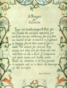 A Prayer for Animals
