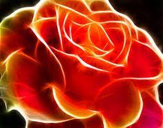 「Fractal Flowers」の画像検索結果