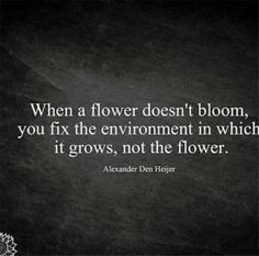 Create an #environment you can #bloom in... #quote #success #leadership