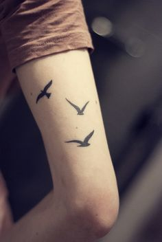 birds #birdtattoo #birdsilhouette