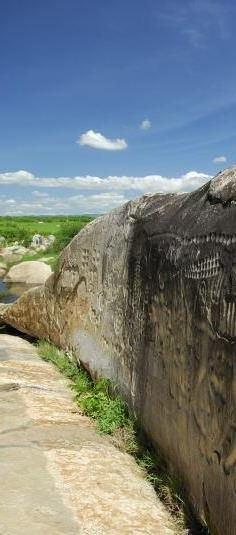 Ingá Stone - Paraíba - Brazil - It is a rock formation in gneiss which covers an area of approximately 250 m². Altogether primary, a vertical wall 46 meters long by 3.8 meters high, and adjacent areas, there are entries whose meanings are unknown. In this set are carved in low relief, several figures, suggest that the representation of animals, fruits, and human constellations like Orion and Milky Way. Ingá Stone - Paraíba - Brazil