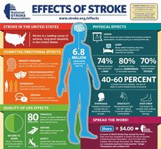 EFFECTS OF STROKE - Although stroke is the fourth leading cause of death in the U., most people don't realize what effects stroke can have on a person's life. Learn the true impact of stroke. Stroke Facts, World Stroke Day, Stroke Therapy, Stroke Association, Stroke Recovery, Memory Problems, Brain Injury, Brain Aneurysm, Brain Health