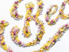 Spring postcard by Yury Veselov, via Behance Flower Typography, Graphic Design Typography, Spring Design, Signage, Behance, Lettering, Type, Flowers, Calligraphy