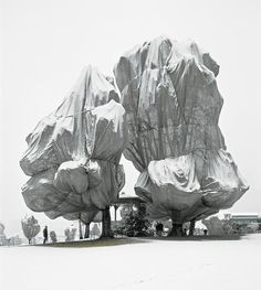In 1998, Christo and Jeanne Claude wrapped trees at the Fondation Beyeler and Berower Park in Switzerland.