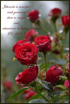 Psalm 103:8 Jehovah is merciful and gracious, slow to anger and abundant in loving kindness.