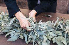 seed eucalyptus leaves