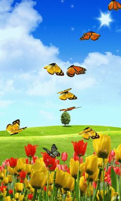GIF'S : Happiness is having you for my Son . Sending hugs to you in Heaven. Butterflies Flying, Beautiful Butterflies, Beautiful Birds, Gif Animé, Animated Gif, Beautiful Gif, Beautiful Pictures, Gif Bonito, Butterfly Gif