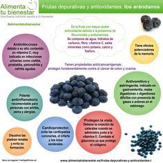 Frutas depurativas y antioxidantes: los arándanos #alimentatubienestar #infografia