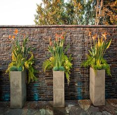 Striking tall container arrangements to adorn a brick wall.