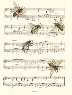Sheet Music Art Print, Bee Art, Bees, Vintage Bees Illustration Print, 112