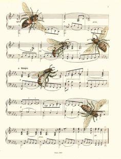 Sheet Music Art Print, Bee Art, Bees, Vintage Bees Illustration Print, 112