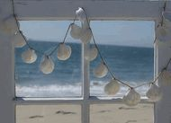 love this shell string of lights.